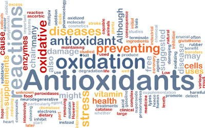 antioxidants importance